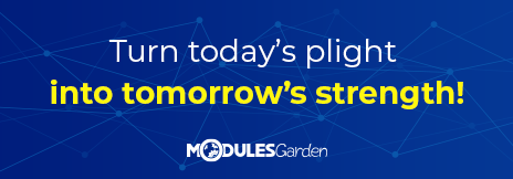 Promotion on Custom Software Development Projects at ModulesGarden